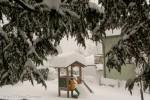 2006 27 gennaio (11) M.jpg