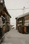 2006 27 gennaio (19) M.jpg