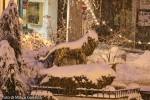 2012 14 dicembre (10) M.jpg