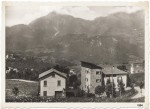 cassina 1954.jpg